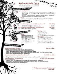Resume Sample Nursing Assistant by Sample Minister Of Music Resume