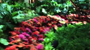 indoor beautiful garden wynn casino las vegas nv youtube