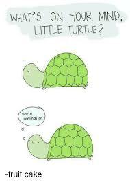 Fruitcake Meme - what s on tour mnd little turtle world domination fruit cake
