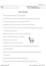 primaryleap co uk teeth fact sheet worksheet