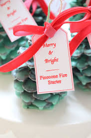 25 best ideas about pinecone fire starters on pinterest