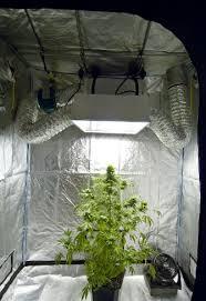 mini chambre de pousse chambre de culture cannabis interieur faire pousser le extracteur