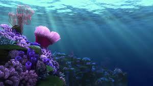 finding nemo screensaver coral reef 1