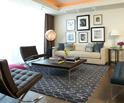 shag area rug in living room modern with young adults bedroom