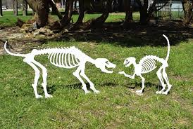 Halloween Decoration Skeleton Cat by Halloween Cat U0026 Dog Skeletons Yard Art Wood Painted Halloween