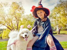 costumes for kids 10 matching costumes for kids and dogs american kennel