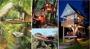 60 of the most beautiful treehouses from all over the world