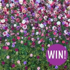 win a flower wall hire valued at 300 u2022 fleurieu weddings