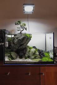 Planted Aquarium Aquascaping 65 Best Aquarium Images On Pinterest Aquarium Ideas Betta Fish