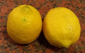 When Does A Lemon Tree Produce Fruit - how to grow lemon trees