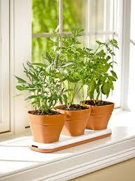 herb garden set home interior design simple modern at herb garden