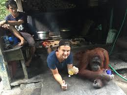 lexus orangutan trys savaitės pas džiunglių karalienės miško žmones ir orangutanus