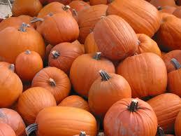 youwall scary pumpkins wallpaper wallpaper wallpapers free