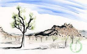 joshua tree country of rocks urban sketchers