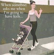 No Kids Meme - 217 best childfree humor images on pinterest childfree funny