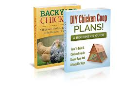 cheap diy backyard chicken coop find diy backyard chicken coop