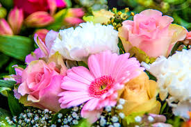 the meaning and symbolism of the word flowers