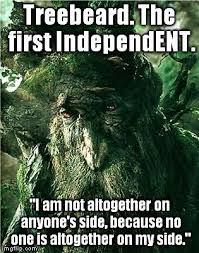 Meme Custom - 413 best custom made memes images on pinterest meme memes humor
