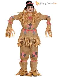 scarecrow costume adults scarecrow costume mens oz fancy dress world book week