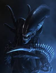 xenomorph alien species fandom powered wikia