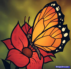 drawing flower and butterfly beautiful flowers butterfly colored