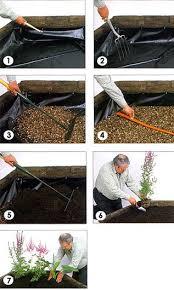 26 best bog garden images on pinterest garden ideas water