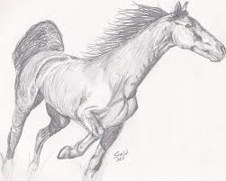 10 best sketch drawing ideas free u0026 premium templates