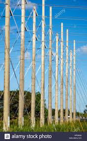 florida power light florida power and light fort myers plant www lightneasy net