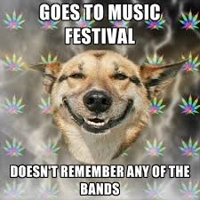 Music Festival Meme - goes to music festival doesn t remember any of the bands create meme