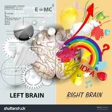 minimalistic resume psd setubal temporal lobe epilepsy left and right brain functions stock vector illustration 178818326