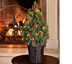 live christmas trees for sale live tabletop christmas tree decorated christmas2017
