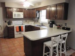 Dark Brown Kitchen Cabinets With White Appliances Everdayentropycom - Kitchen photos dark cabinets