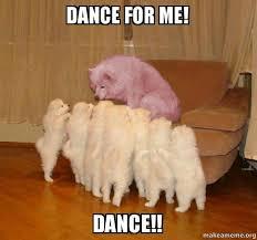 Dancing Dog Meme - dance for me dance malicious storytelling dog make a meme