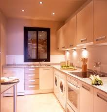 Ideas For A Galley Kitchen Elegant Interior And Furniture Layouts Pictures Galley Kitchen