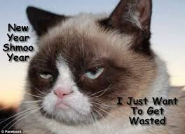 Create A Grumpy Cat Meme - grumpy cat meme s by gary graefen grumpy cat meme by gary