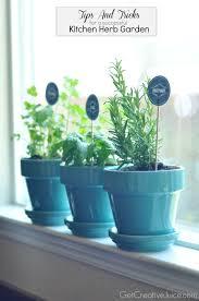 indoor herb garden pots gardening ideas