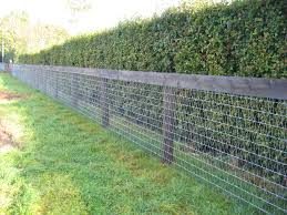 best 25 mesh fencing ideas on pinterest dog fence wire fence