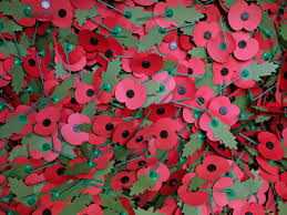 veteran u0027s advice on how to wear remembrance day poppy is shared