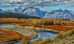 Wyoming mountains images Grand teton national park trees united states wyoming autumn jpg