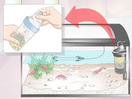 How To Set A Table Properly by How To Make A Shrimp Aquarium 15 Steps With Pictures Wikihow