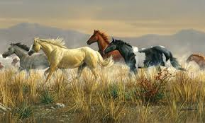 Horse Murals by Horse Wallpaper Murals Horse Wallpapers Photo Shared By Kitti 3
