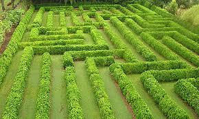 World Botanical Gardens World Botanical Gardens Children S Maze