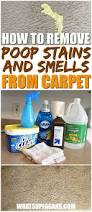 Area Rug Cleaning Tips by Best 25 Carpet Shampoo Solution Ideas On Pinterest Diy Carpet