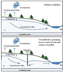 sustainability free full text coastal forests and groundwater