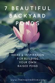 7 beautiful backyard ponds the inspired hive