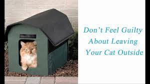 House Plan Elegant Cat House Plans Luxury