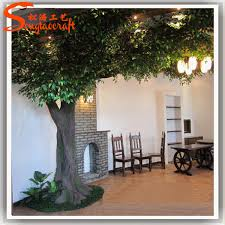 two story 25 banyan tree at the indoor college recreational
