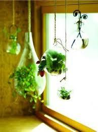 indoor gardening window herb farm great video great stuff from