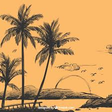 palm tree sketch background vector free download