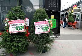 tree sales at big box retailers increase photos and images